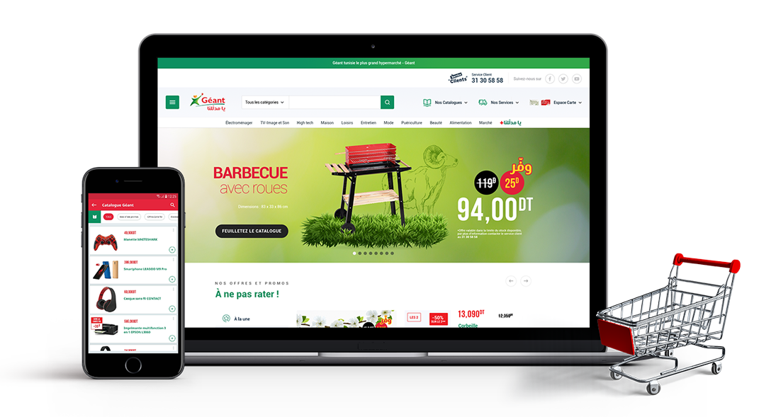 Page_detail_Geant.png (407 KB)