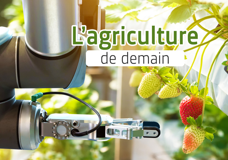 Agriculture verticale et robots : le monde peut-il être sauvé ?