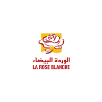 WARDA ROSE BLANCHE